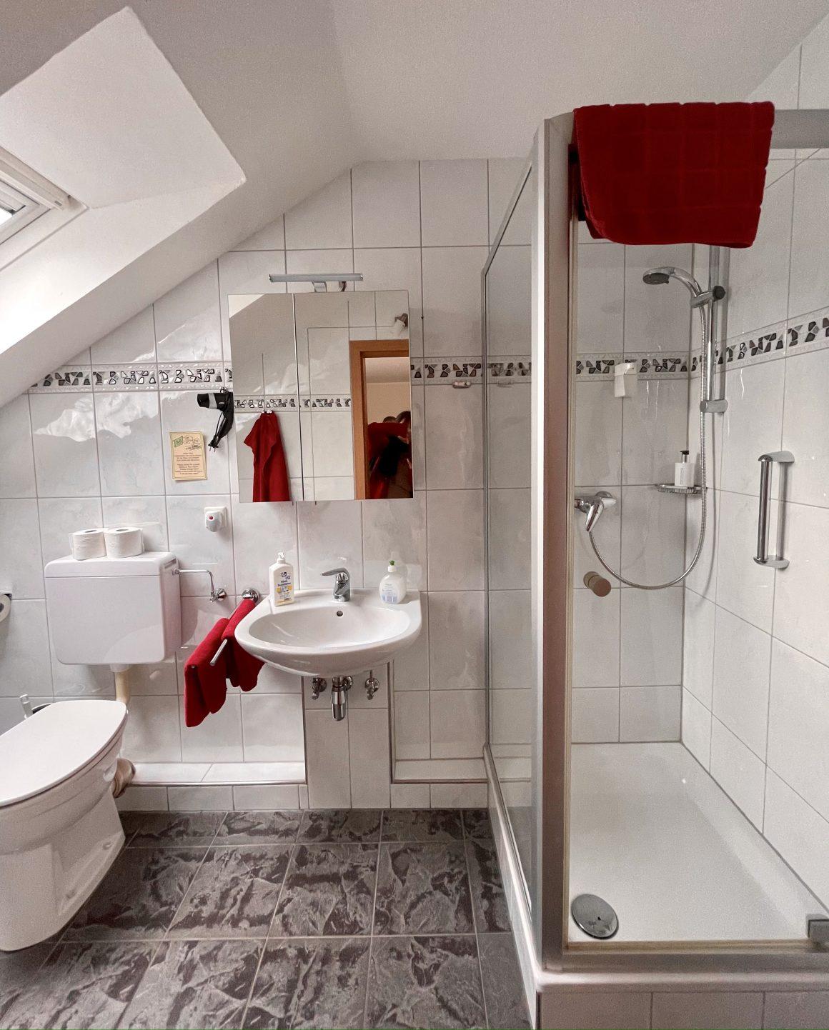 Badzimmer mit Dusch und WC